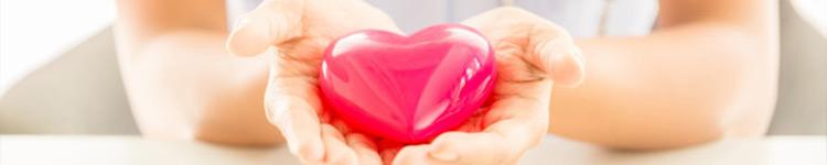 Serce, krążenie