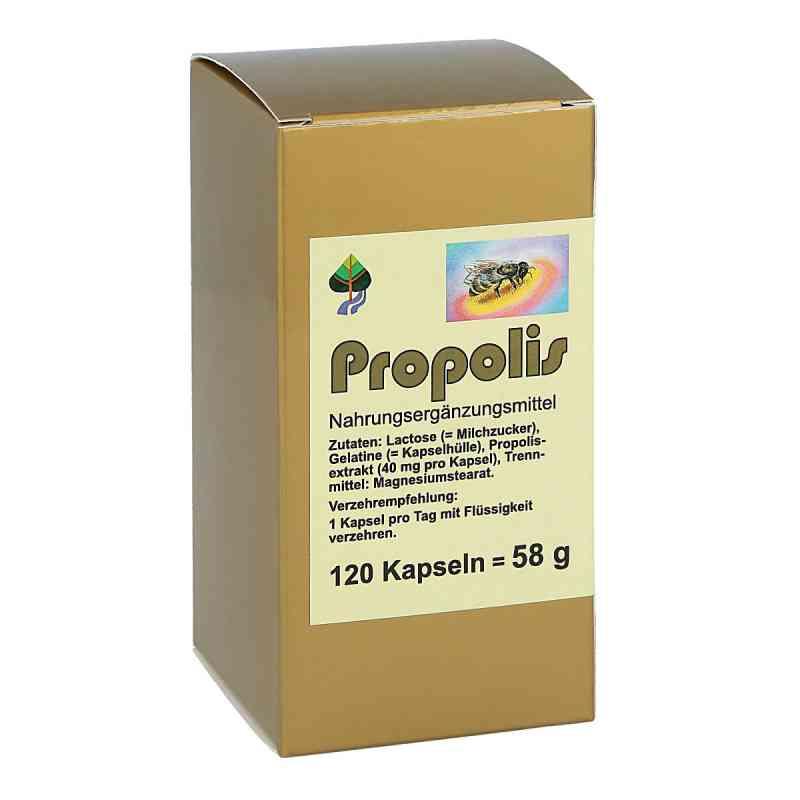 Propolis Kapseln zamów na apo-discounter.pl