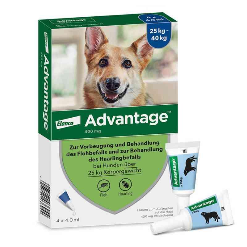 Advantage 400 f. Hunde Einzeldosispip.  zamów na apo-discounter.pl