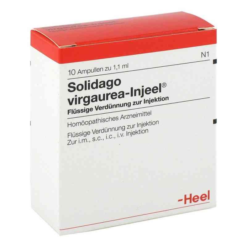 Solidago Virgaurea Injeele  zamów na apo-discounter.pl