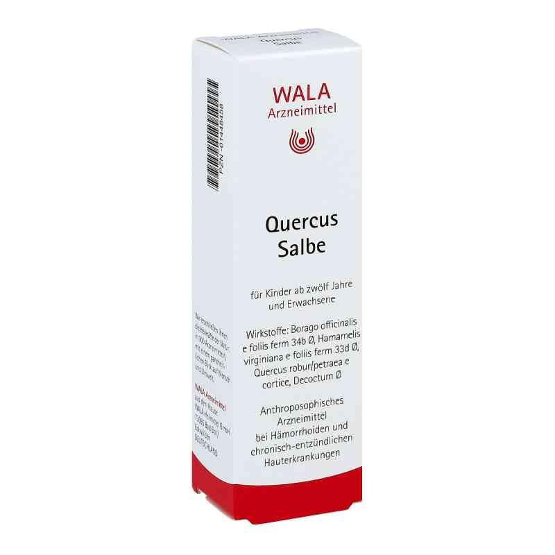 Wala Quercus maść na hemoroidy zamów na apo-discounter.pl