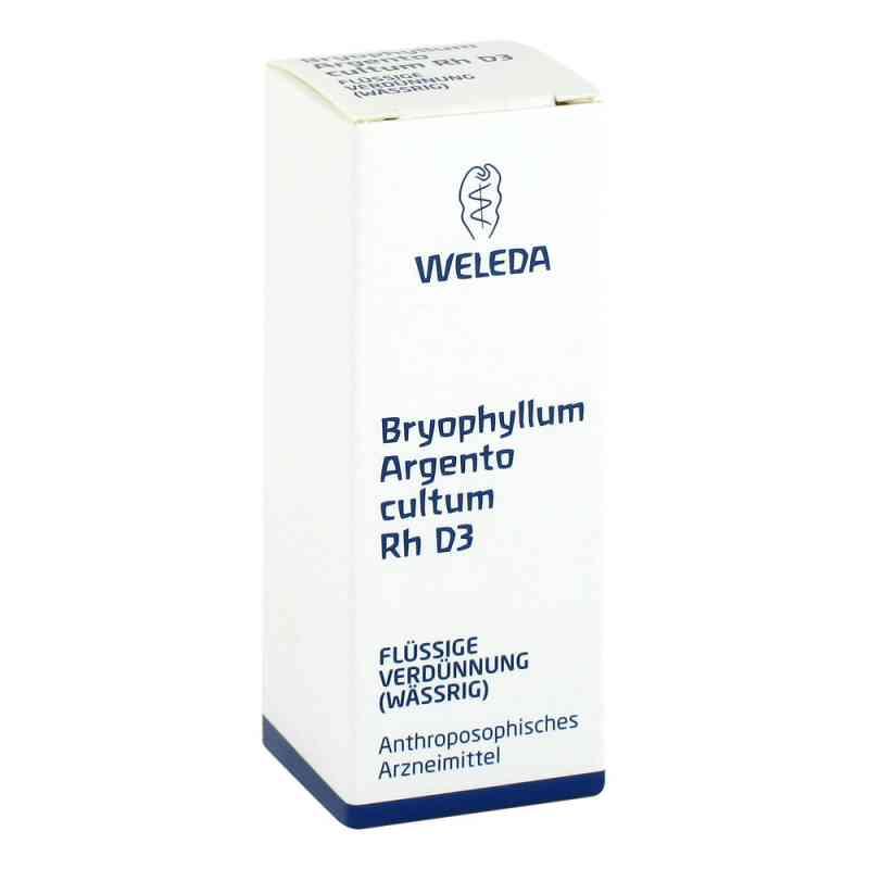 Weleda Bryophyllum Argento Cultum Rh D3, Roztwór   zamów na apo-discounter.pl