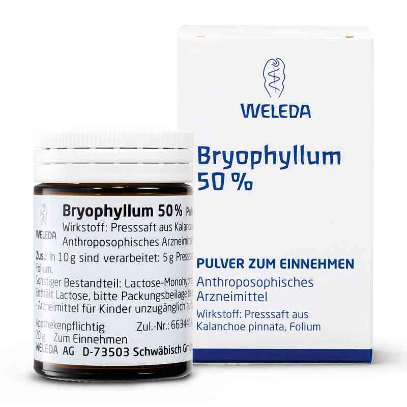 Weleda Bryophyllum 50% proszek doustny    zamów na apo-discounter.pl