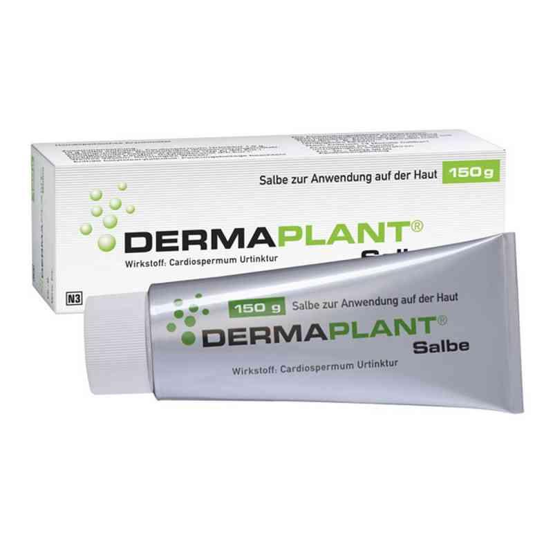 Dermaplant Salbe  zamów na apo-discounter.pl