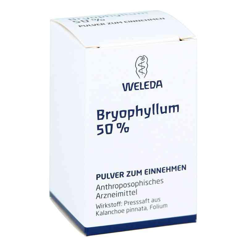 Weleda Bryophyllum 50% proszek   zamów na apo-discounter.pl
