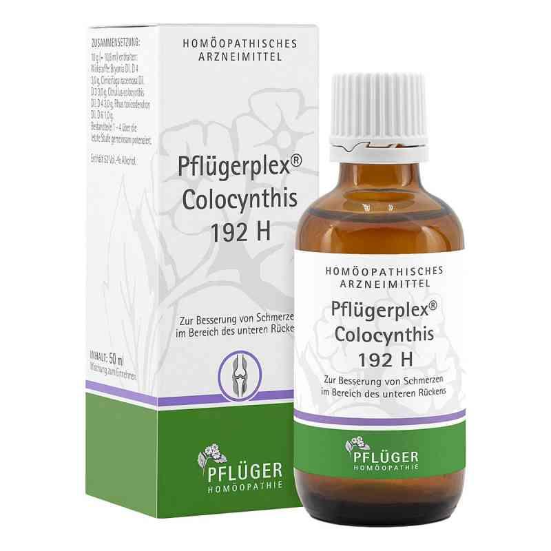Pfluegerplex Colocynthis 192 H Tropfen  zamów na apo-discounter.pl