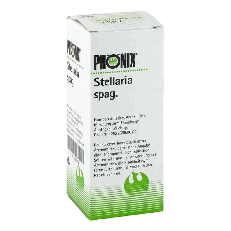 Phoenix Stellaria spag. Tropfen  zamów na apo-discounter.pl
