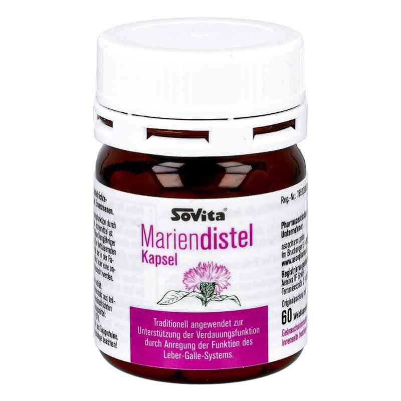 Mariendistel kapsułki ochronne na wątrobę  zamów na apo-discounter.pl