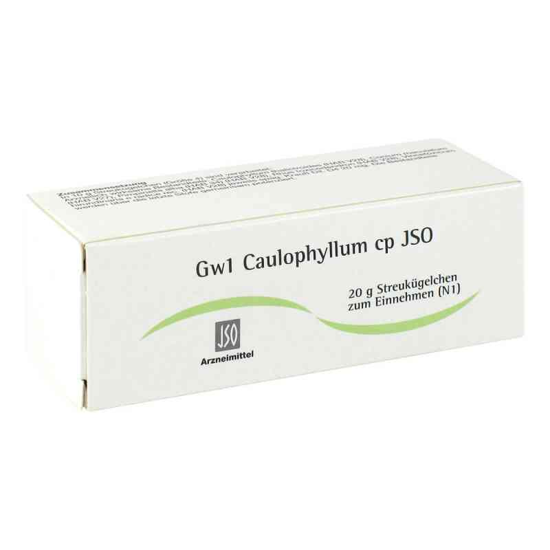 Jso Jkh Gewebemittel Gw 1 Caulophyllum cp Glob.  zamów na apo-discounter.pl