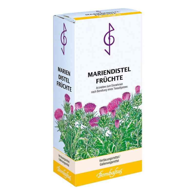 Herbata z ostu zamów na apo-discounter.pl