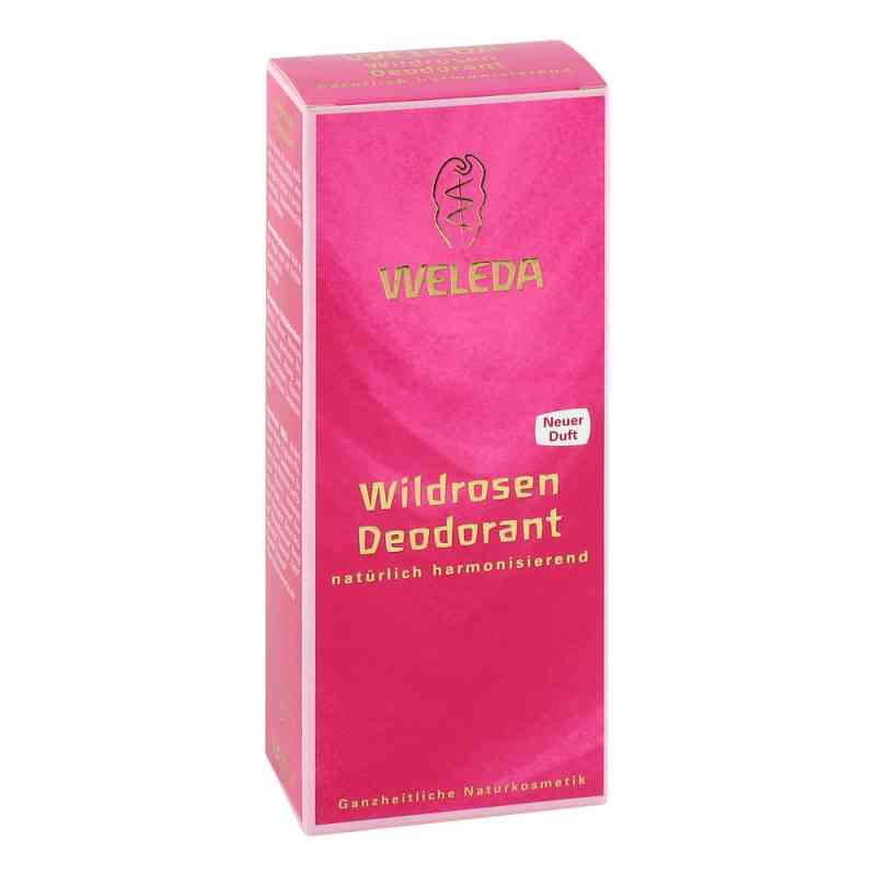 Weleda dezodorant z dziką różą zamów na apo-discounter.pl