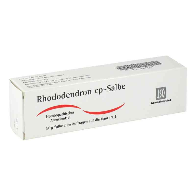 Rhododendron Cp. Salbe  zamów na apo-discounter.pl