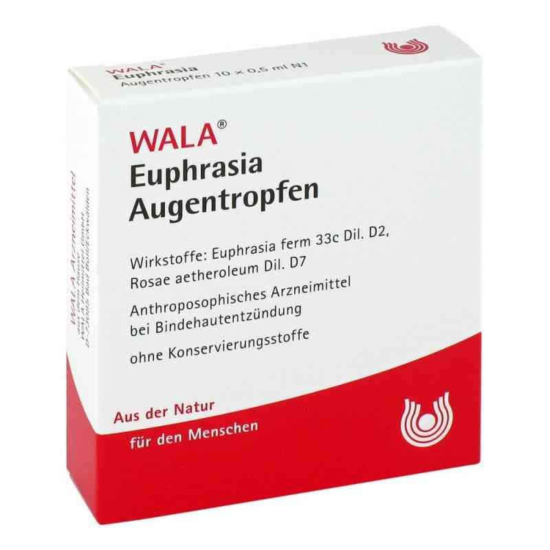 Wala Euphrasia Krople do oczu ze świetlikiem zamów na apo-discounter.pl