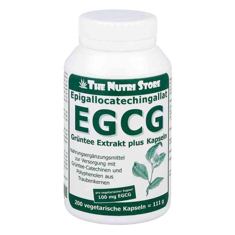 Egcg 100 mg ekstrakt z zielonej herbaty plus kapsułki   zamów na apo-discounter.pl