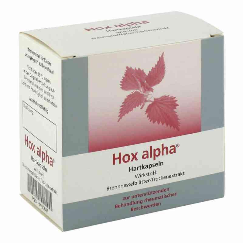 Hox alpha Kapseln zamów na apo-discounter.pl
