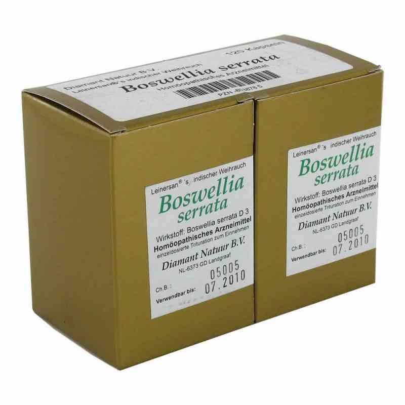 Boswellia serrata L. ind. Weihrauch Kapseln zamów na apo-discounter.pl