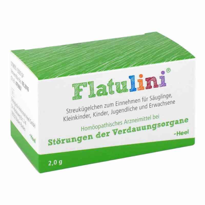 Flatulini Globuli  zamów na apo-discounter.pl