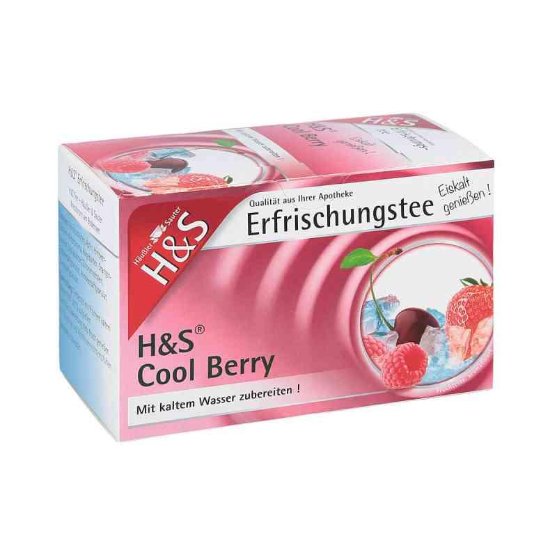 H&s Cool Berry Filterbeutel zamów na apo-discounter.pl