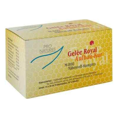 Gelee Royal Aufbaukur M800 ampułki do picia  zamów na apo-discounter.pl