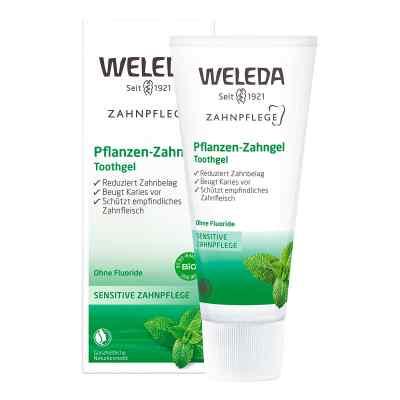 Weleda roślinny żel do zębów  zamów na apo-discounter.pl