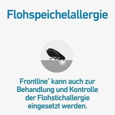 Frontline Spot 2-10 roztwór dla psów, pipetka  zamów na apo-discounter.pl