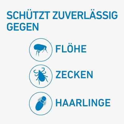 Frontline Spot 10-20 roztwór dla psów, pipetka  zamów na apo-discounter.pl