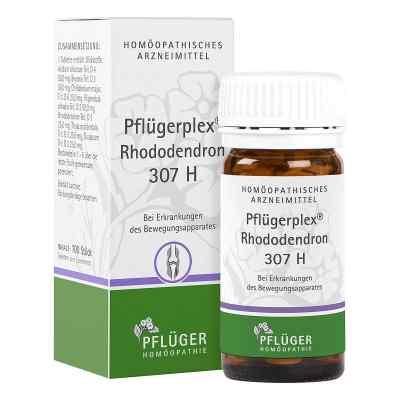 Pfluegerplex Rhododendron 307 H Tabl.