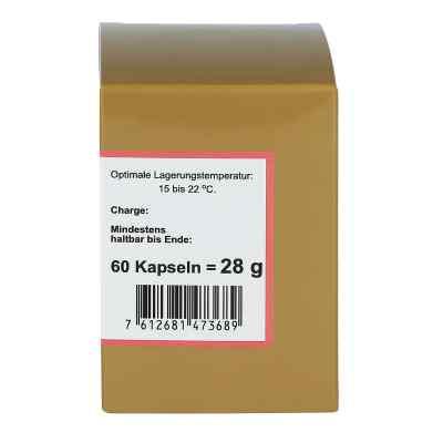Witamina B12 kapsułki  zamów na apo-discounter.pl