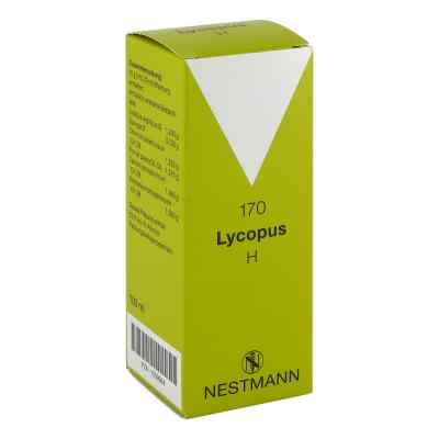 Lycopus H Nr. 170 Tropfen  zamów na apo-discounter.pl