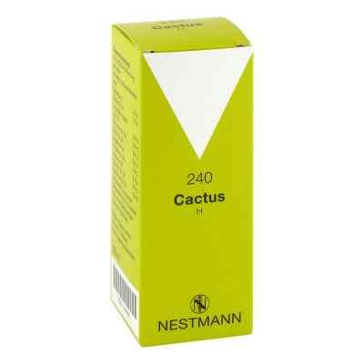 Cactus H 240 Tropfen  zamów na apo-discounter.pl