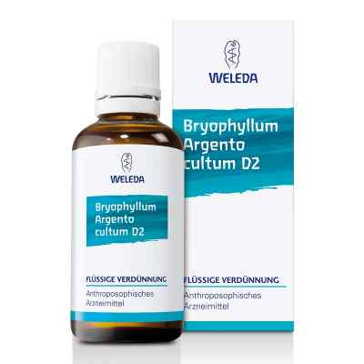 Weleda Bryophyllum Argento Cultum Roztwór D2  zamów na apo-discounter.pl
