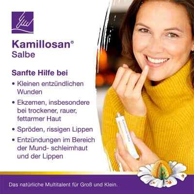 Kamillosan Salbe  zamów na apo-discounter.pl