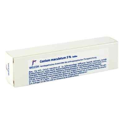 Conium Maculatum Ungt. 5%