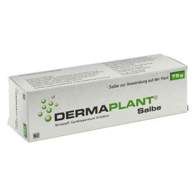 Dermaplant Salbe