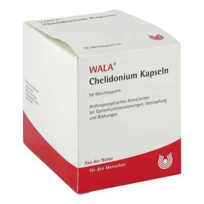Wala Chelidonium kapsułki  zamów na apo-discounter.pl