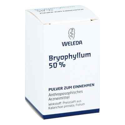Weleda Bryophyllum 50% proszek