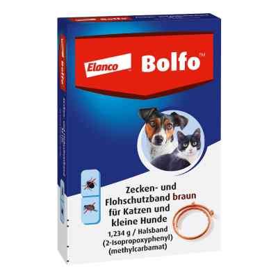 Bolfo obroża p/pchłom dla małych psów i kotów  zamów na apo-discounter.pl
