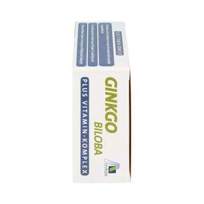 Ginkgo 100 mg kapsułki + wit. B1, C + E