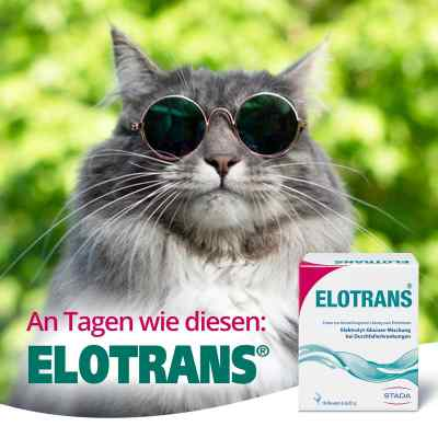 Elotrans Pulver  zamów na apo-discounter.pl