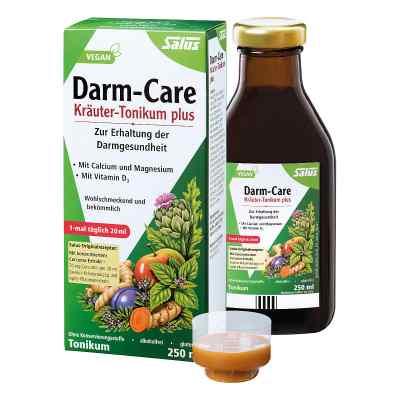 Salus Darm Care Tonik ziołowy na jelita