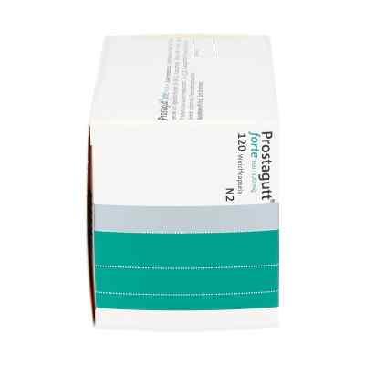 Prostagutt Forte kapsułki 160/120 mg  zamów na apo-discounter.pl