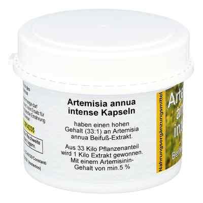 Artemisia Annua Beifuss kapsuki  zamów na apo-discounter.pl