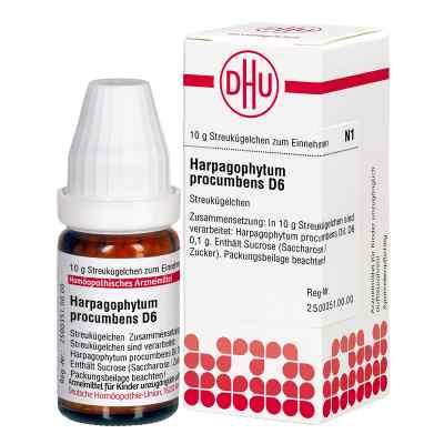 Harpagophytum Proc. D 6 Globuli  zamów na apo-discounter.pl