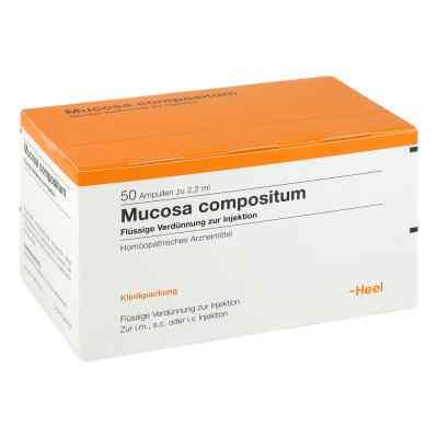 Mucosa Comp. Amp.