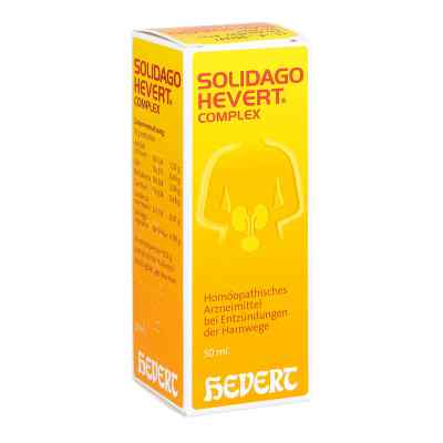 Solidago Hevert Complex Tropfen  zamów na apo-discounter.pl