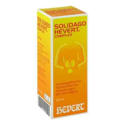 Solidago Hevert Complex Tropfen