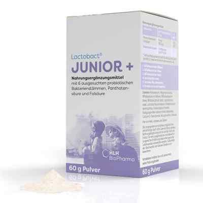 Lactobact Junior proszek  zamów na apo-discounter.pl