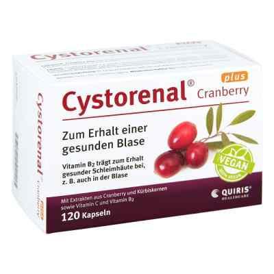 Cystorenal Cranberry plus kapsułki  zamów na apo-discounter.pl