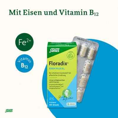 Floradix Żelazo plus witamina B12 kapsułki dla wegan