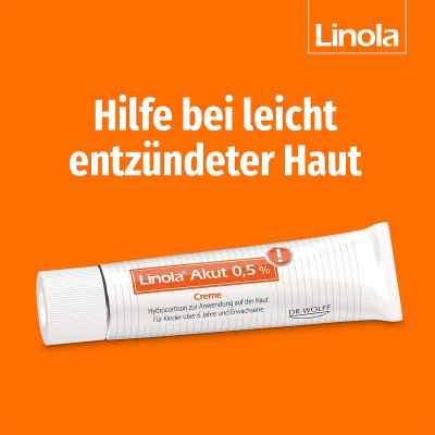 Linola akut 0,5% Creme  zamów na apo-discounter.pl